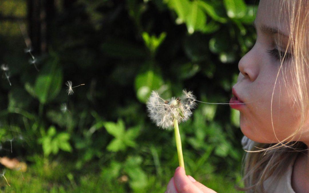 Lato na wsi – dzienne pobyty dla dzieci